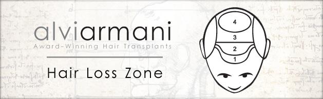 alviarmani-hair-zone